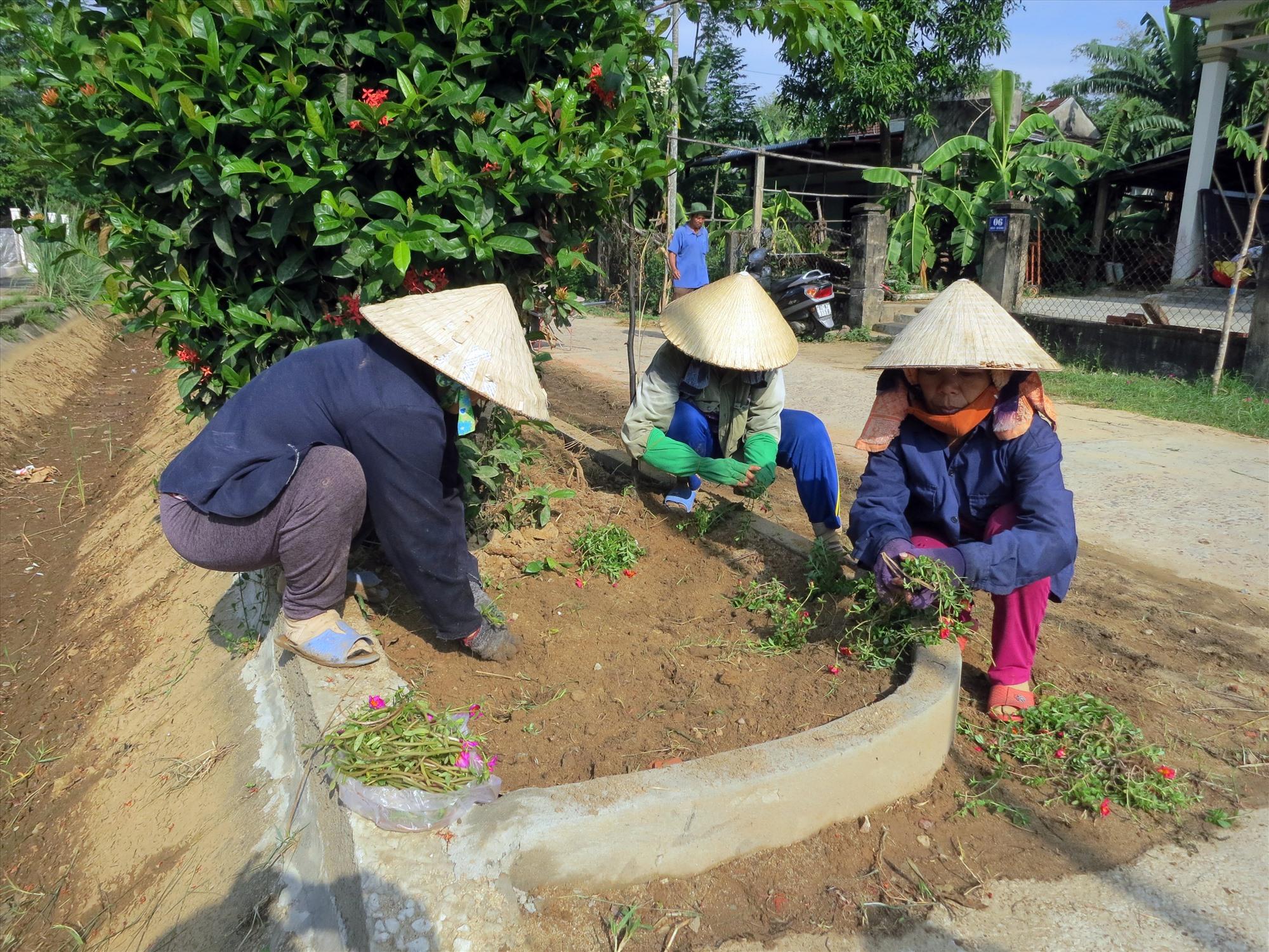 Người dân xã Điện Trung vệ sinh, trồng hoa làm đẹp đường quê. Ảnh: T.C