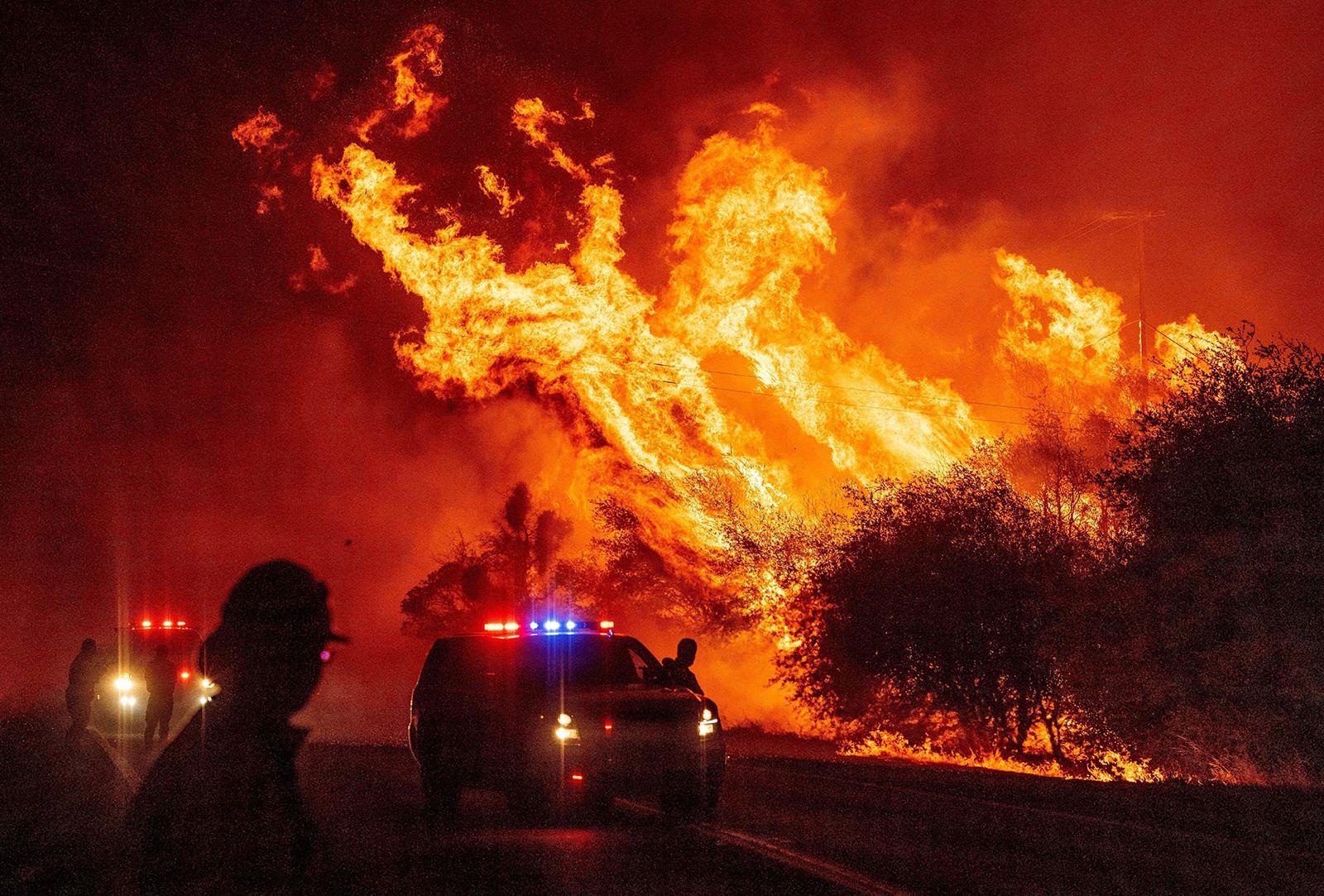 Các đám cháy rừng nghiêm trọng tại Mỹ và nhiều nước châu Âu được xem là thực tế nghiệt ngã của biến đổi khí hậu. Ảnh: Gettyimage
