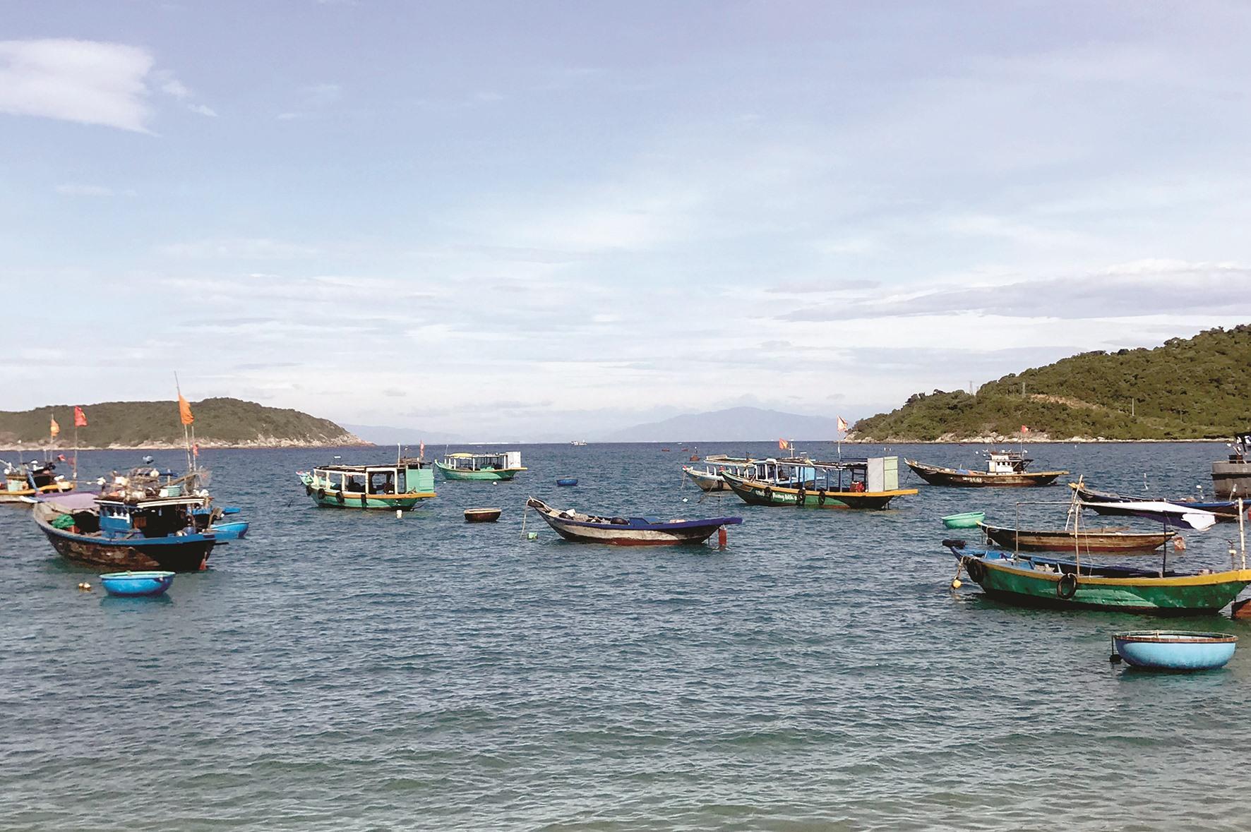 Các tàu thuyền trước đây phục vụ du lịch nay chuyển đổi sang đánh bắt hải sản.