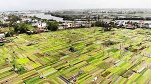 A green tourist site in Quang Nam