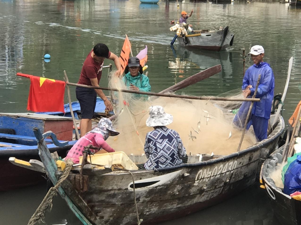 Người dân ở Cù Lao Chàm quay lại nghề biển để tìm sinh kế trụ lại qua đại dịch. Ảnh: H.Q
