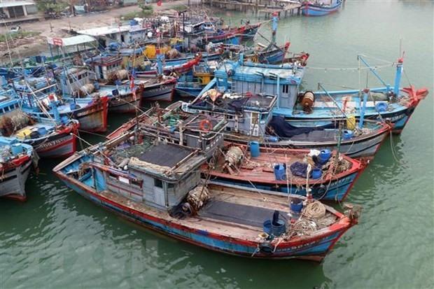 Vietnam's fishing vessels in Da Nang city (Photo: VNA)