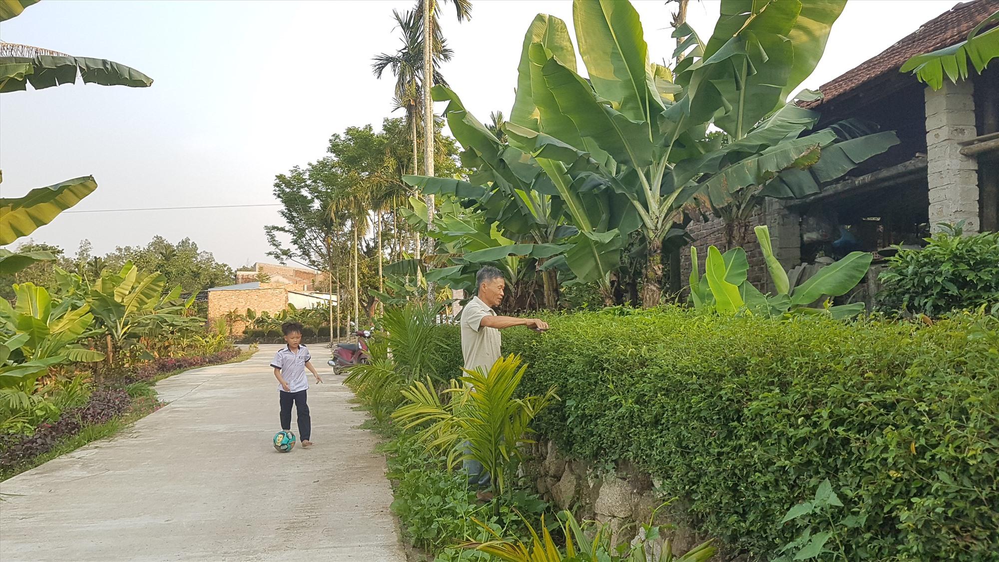Tiên Phước đang tập trung xây dựng huyện nông thôn mới kiểu mẫu đến năm 2025. Ảnh: D.L