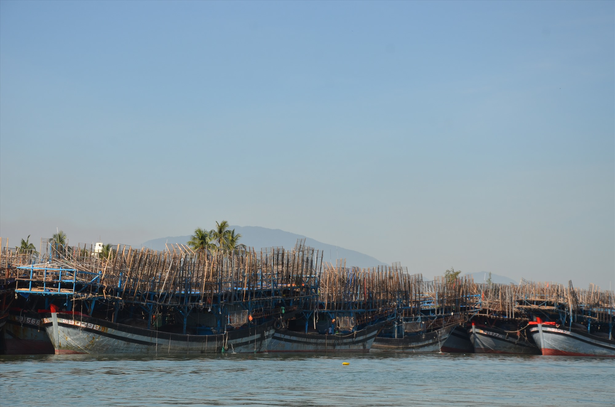 Tàu câu mực khơi ở xã Tam Giang (Núi Thành) vào neo đậu tránh bão số 5. Ảnh: H.P