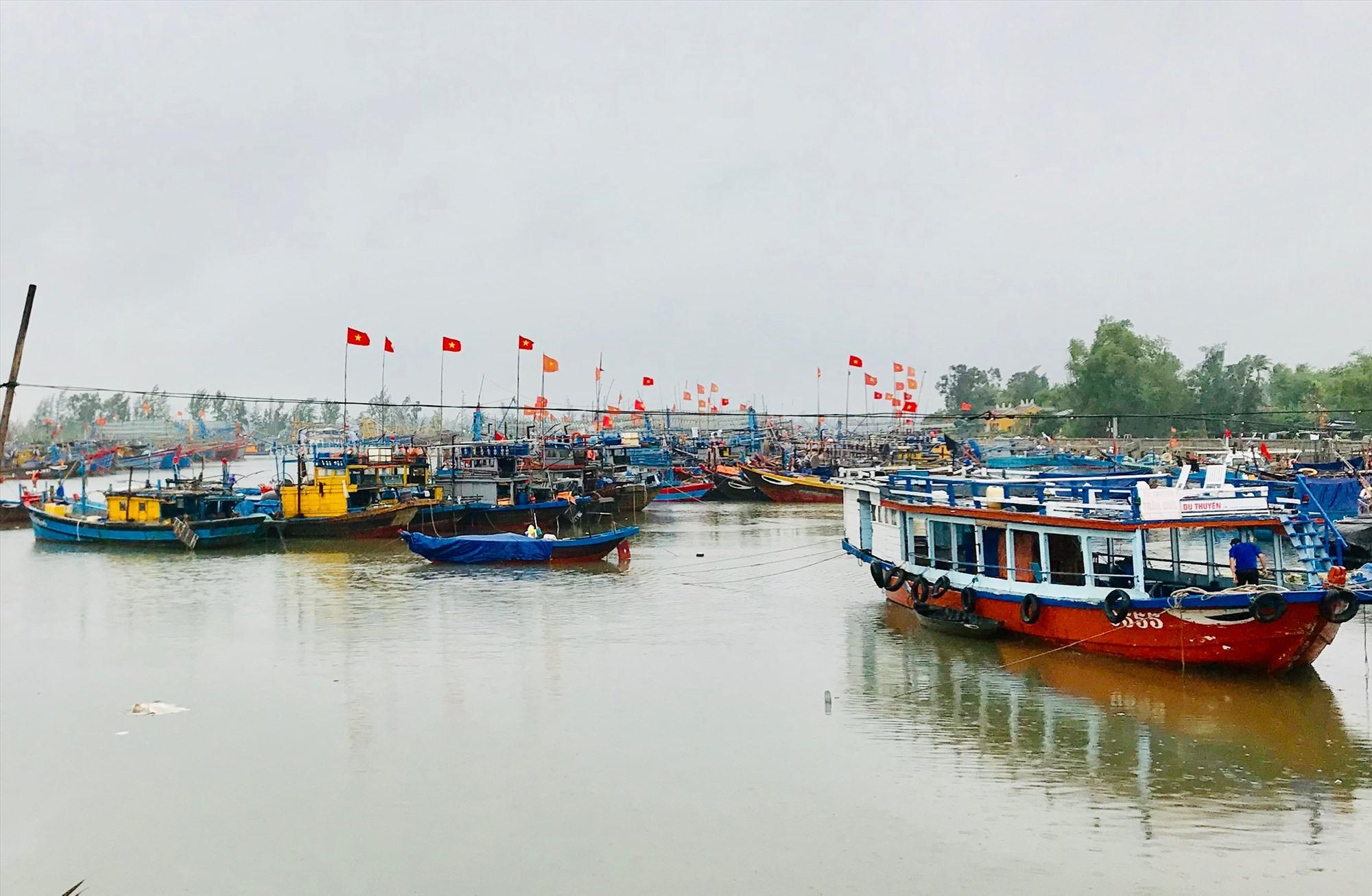 Tàu thuyền neo đậu trú bão tại âu thuyền Hồng Triều. Ảnh: Q.T