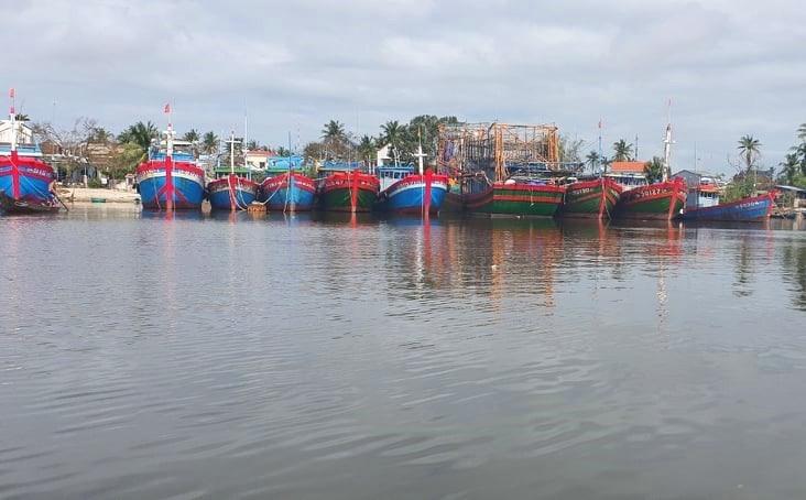 Hàng nghìn tàu thuyền đã được đưa vào nơi tránh trú an toàn