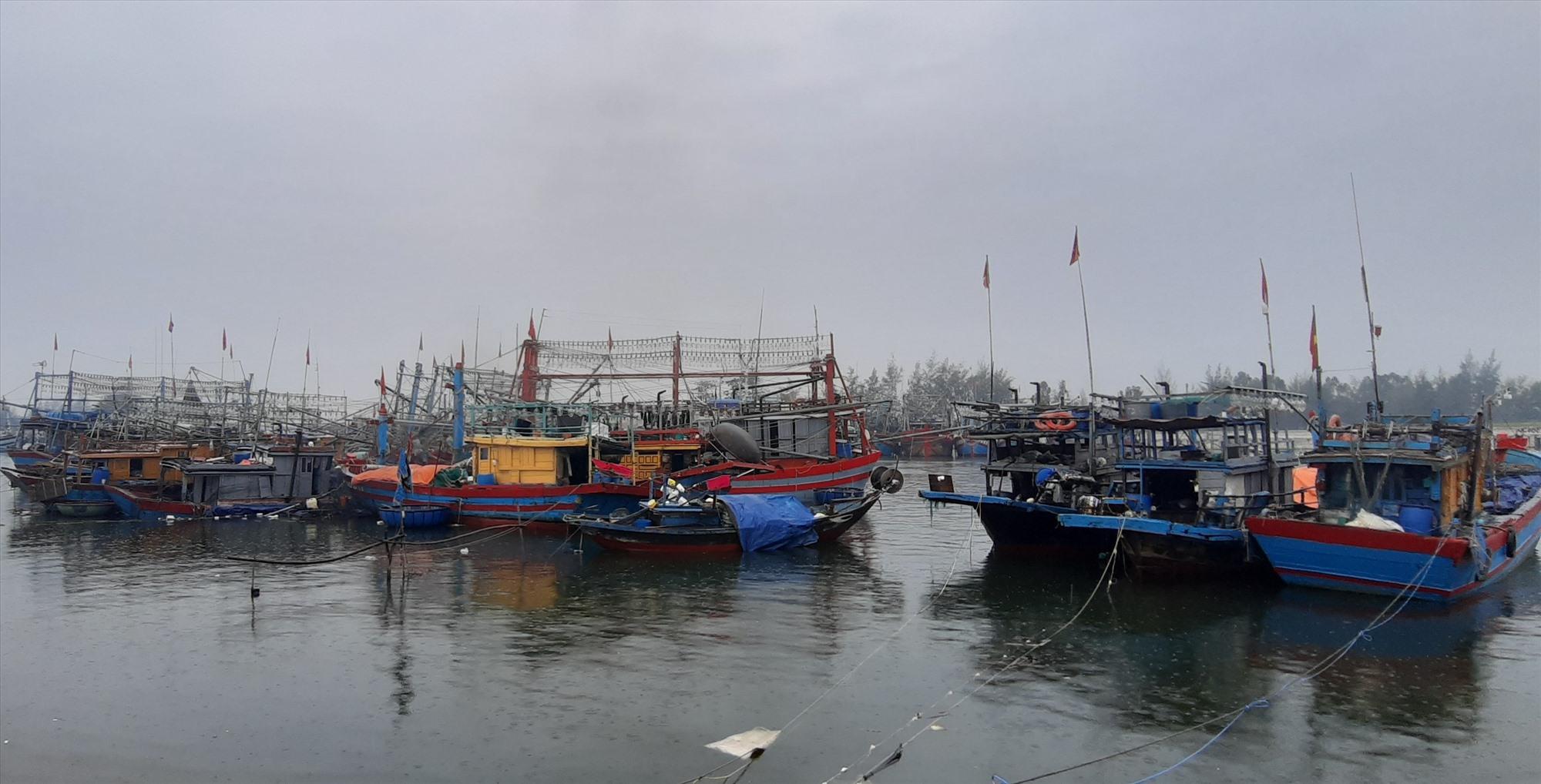 Đến chiều nay 11.9, toàn bộ 345 tàu thuyền của ngư dân Duy Xuyên đã vào nơi tránh trú an toàn.   Ảnh: N.T