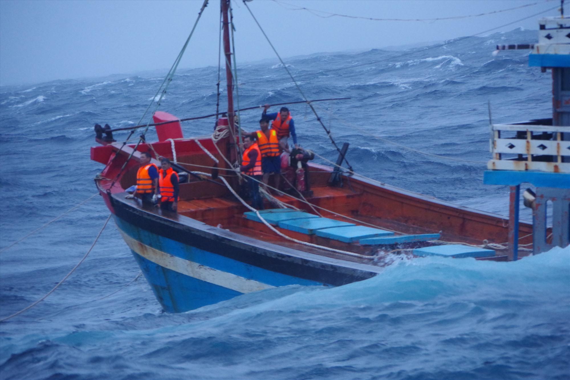 5 ngư dân trên tàu cá của Quảng Ngãi gặp nạn. Ảnh: N.T