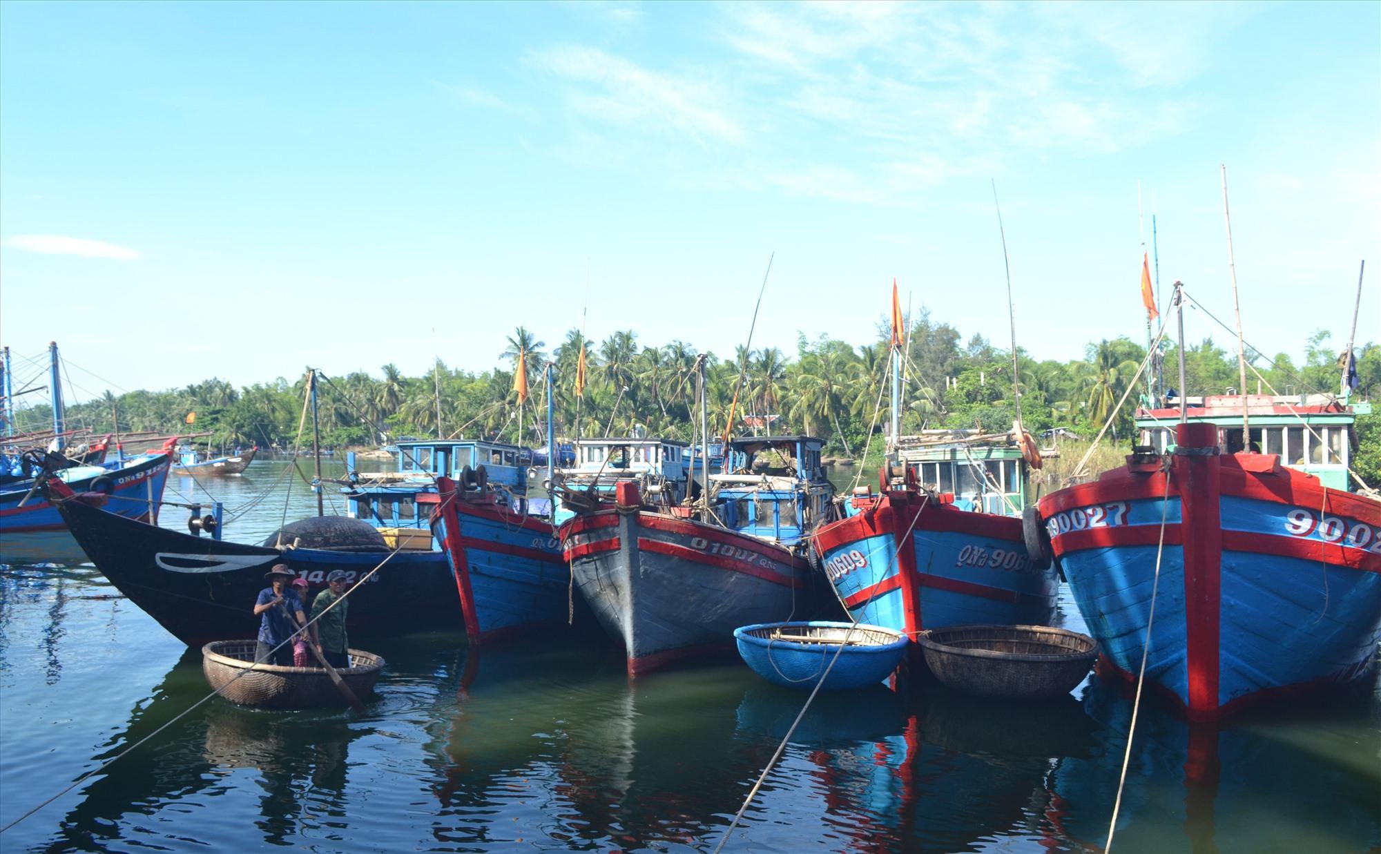 Ngư dân xã Tam Tiến neo đậu tránh trú bão số 5 cho tàu thuyền. Ảnh: Q.VIỆT