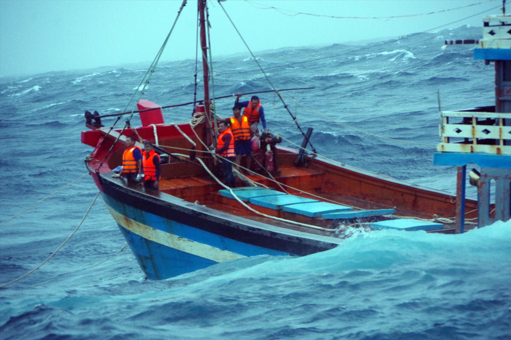 Năm ngư dân trên tàu cá Quảng Ngãi được ứng cứu an toàn. Ảnh: N.T