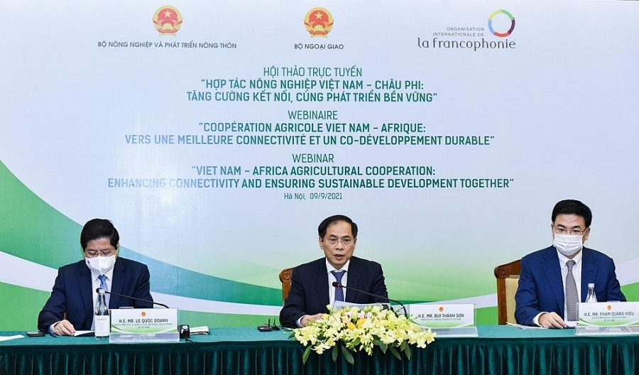 Vietnamese Minister of Foreign Affairs Bui Thanh Son (in the middle) at the webinar on strengthening Vietnam – Africa agricultural cooperation. Photo: TTXVN