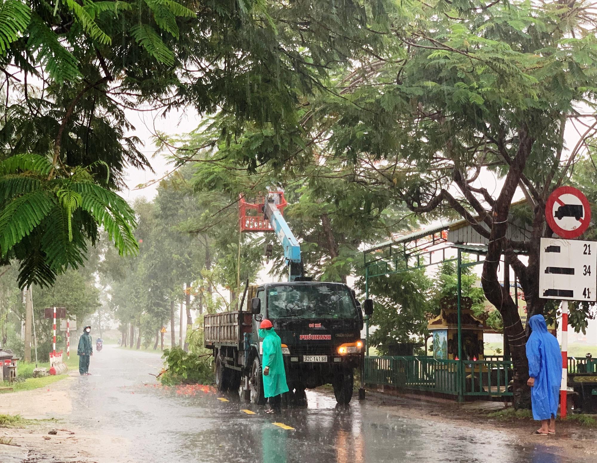 Những ngày qua, huyện Duy Xuyên ra quân cắt tỉa cây cối để hạn chế thiệt hại do mưa bão gây ra. Ảnh: N.T