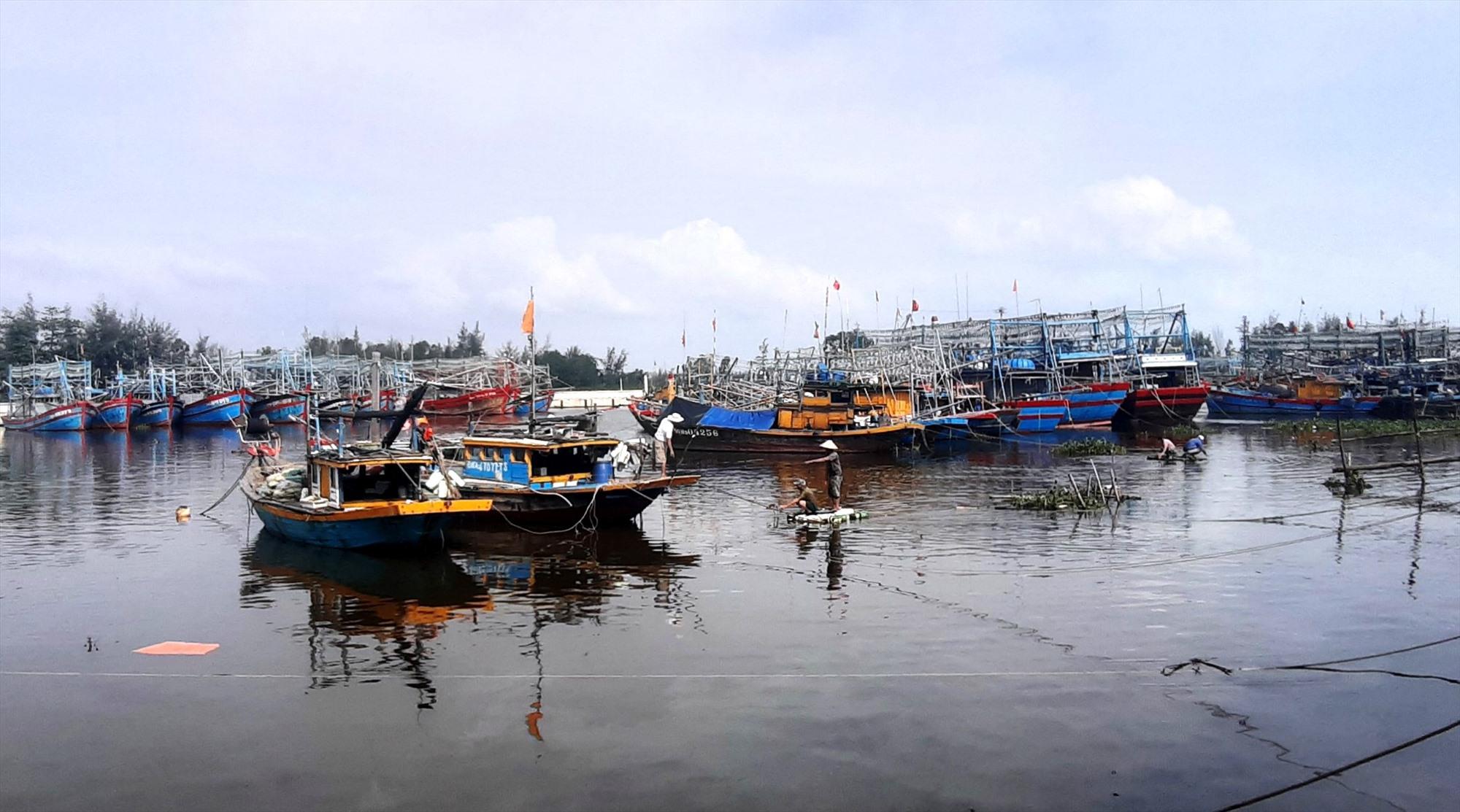 Âu thuyền Hồng Triều (Duy Nghĩa, Duy Xuyên) được đầu tư nâng cấp, tạo điều kiện thuận lợi cho tàu thuyền tránh trú bão. Ảnh: N.T