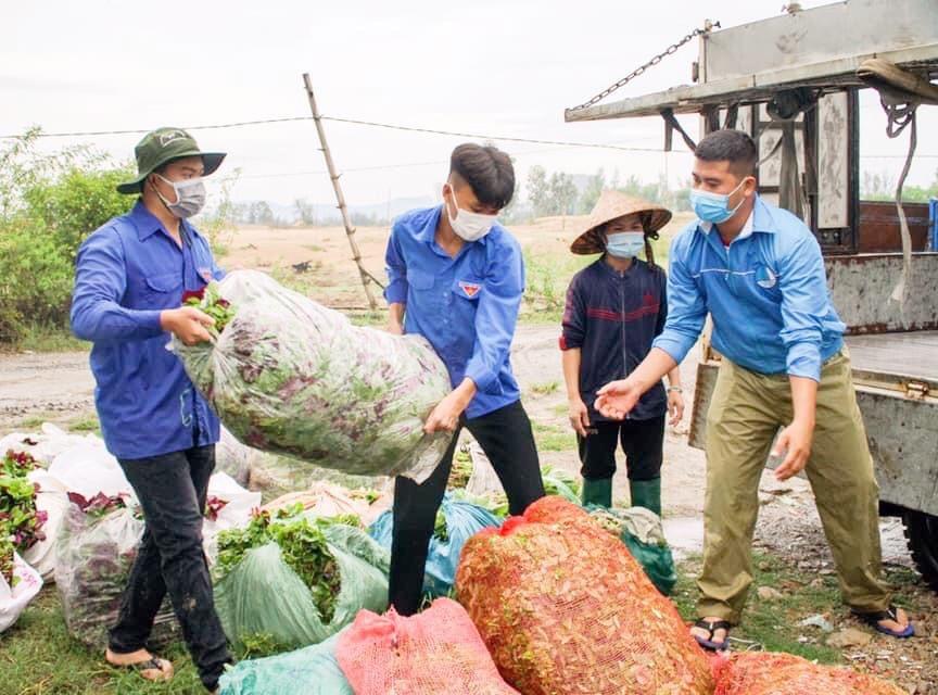 Đội xung kích ở các phường, xã của thị xã Điện Bàn giúp dân thu hoạch nông sản, cung ứng lương thực cho những hộ dân trong khu phong tỏa. Ảnh: X.H