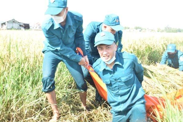 Mỗi ngày có từ 10 - 17 dân quân tự vệ đến hỗ trợ người dân thu hoạch lúa.