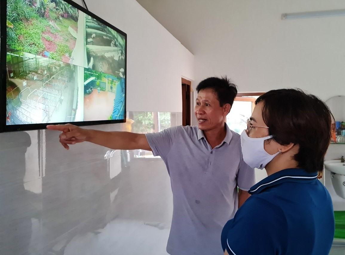 Ông Huỳnh Văn Bình đang theo dõi đàn heo qua hệ thống camera giám sát. Ảnh: L.L