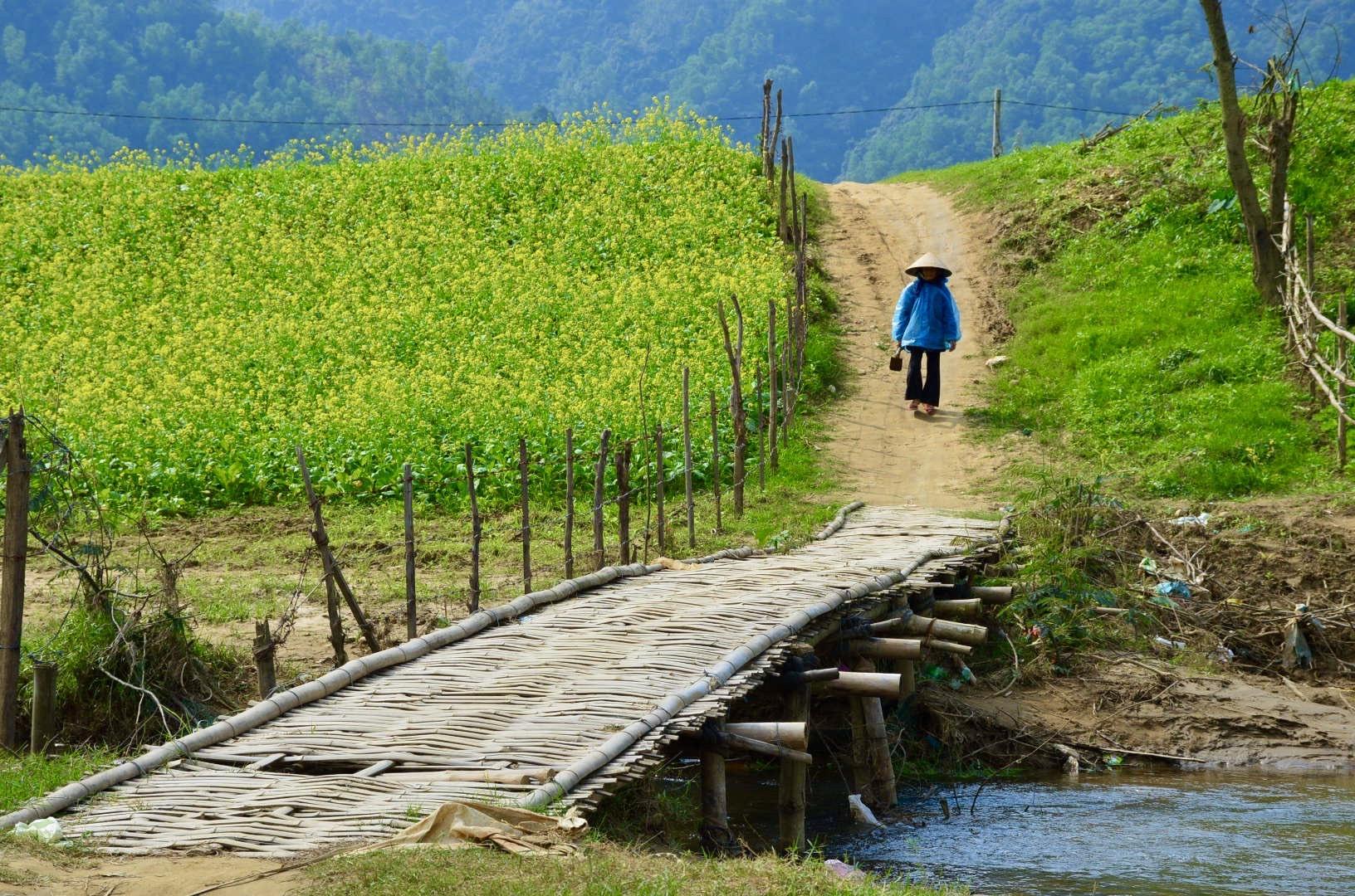 Theo UNWTO, ngành du lịch là một trụ cột trong nhiều mục tiêu phát triển bền vững. Trong ảnh: Một góc làng quê ở Đại Lộc. Ảnh: Q.T