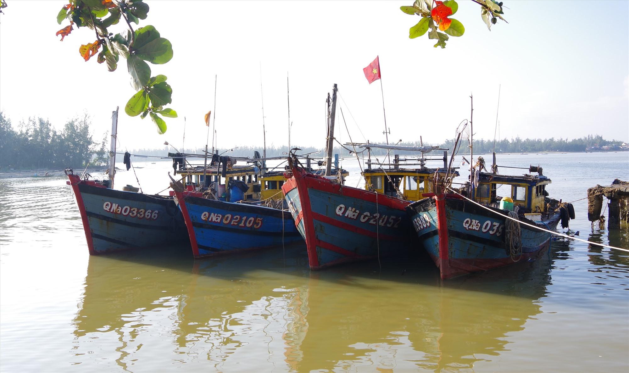 Đồn Biên phòng Cửa Đại bắt giữ 4 tàu giã cào của ngư dân phường Cẩm Nam. Ảnh: HỒNG ANH