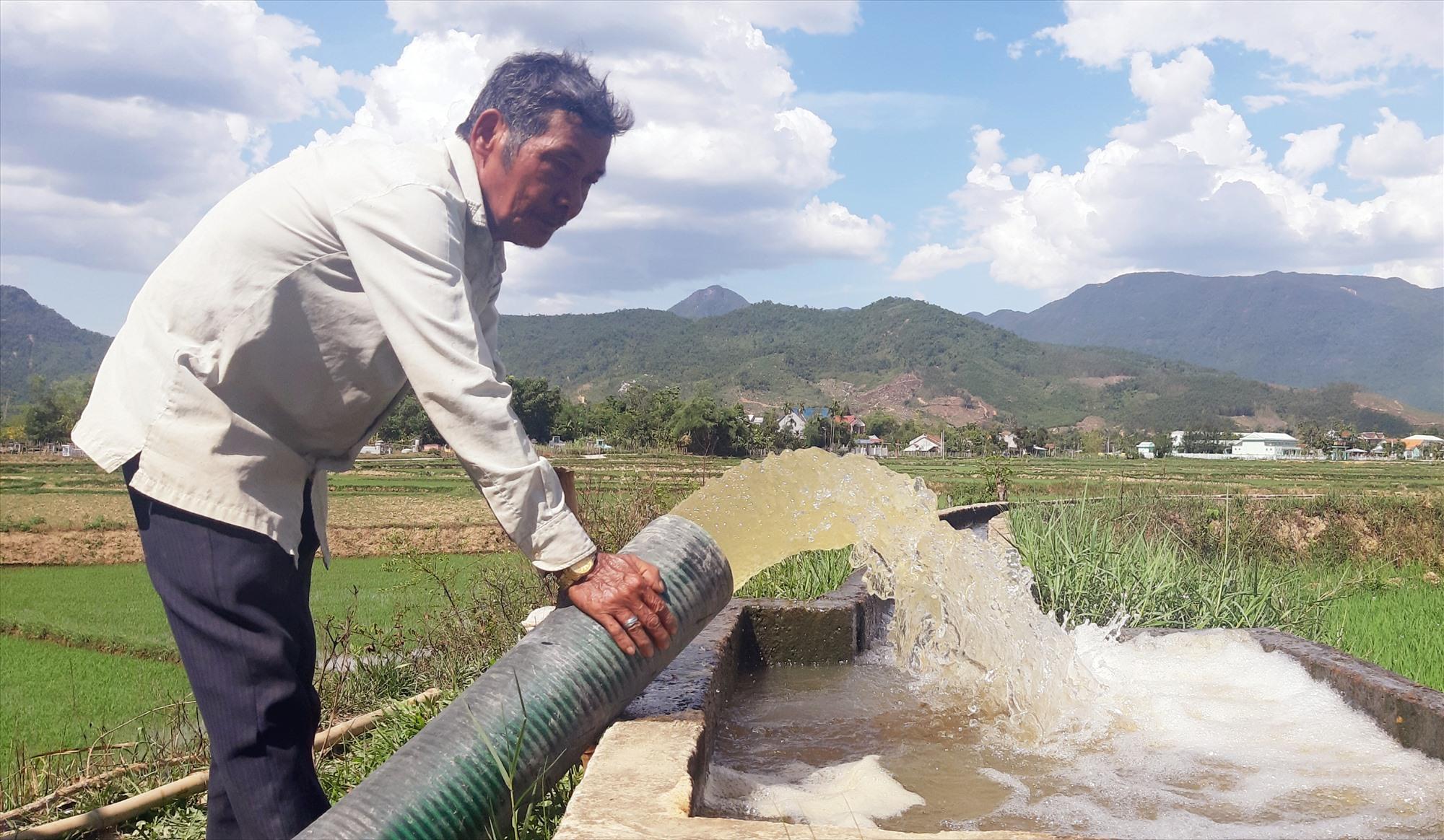Vụ hè thu 2021 này, toàn tỉnh có gần 7.000ha lúa phải thực hiện các biện pháp chống hạn. Ảnh: S.A