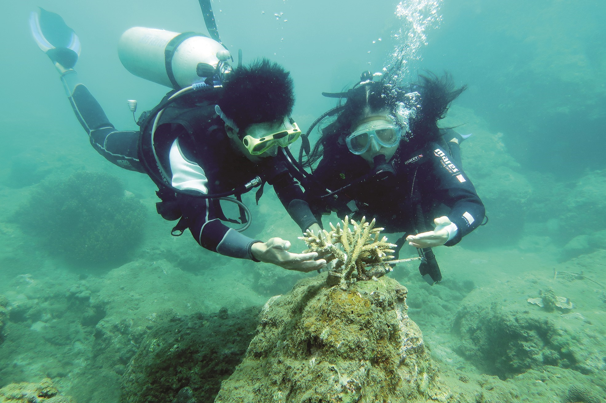 Divers clean the seabed in the Cham Islands World Biosphere Reserve to help corals grow well .