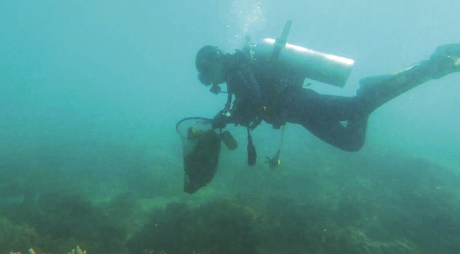 A diver looking for the garbage