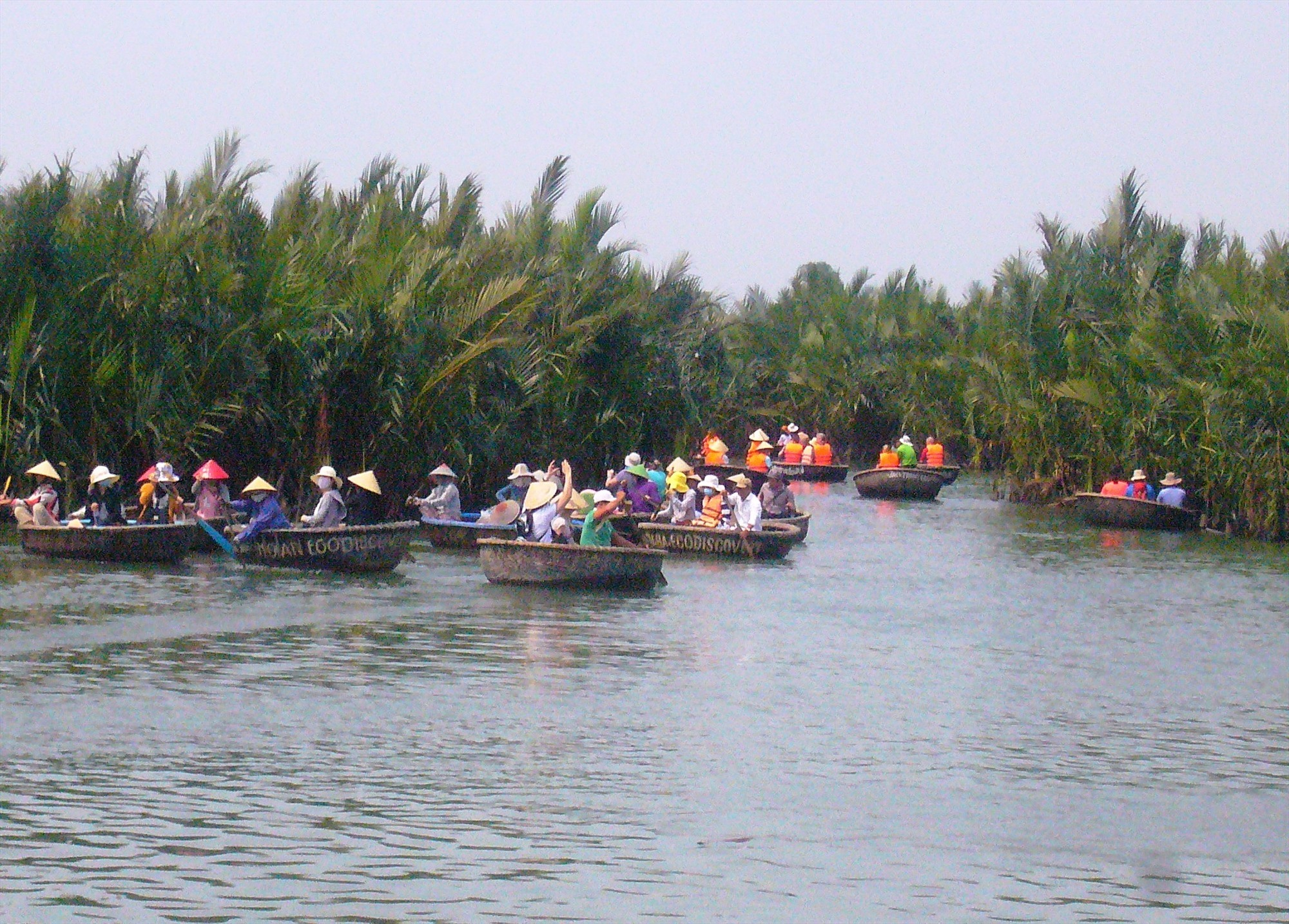 The Bay Mau nipa palm forest (Cam Thanh commune, Hoi An city)