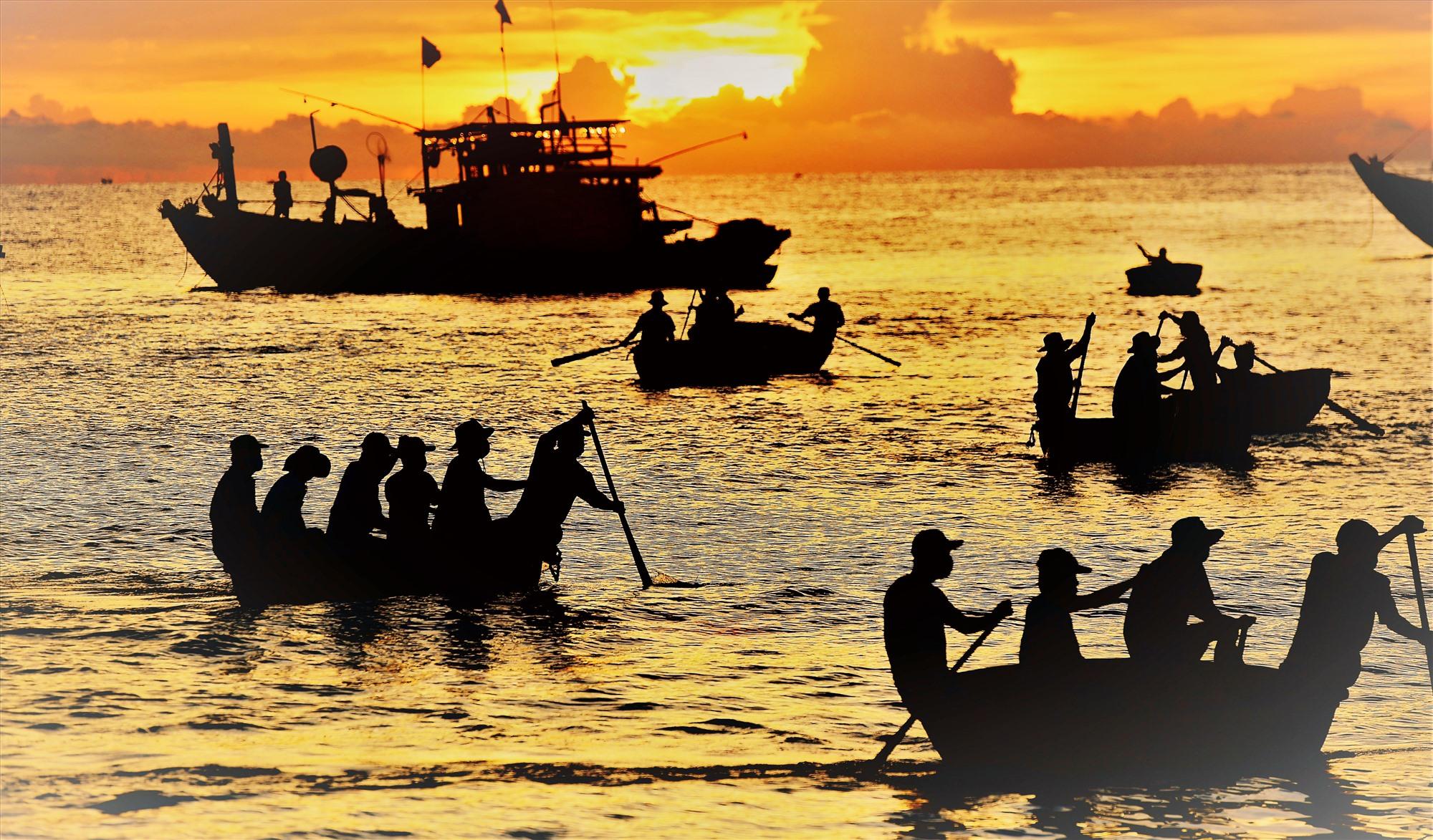 Ngư dân ở miền quê biển Tam Tiến sử dụng thuyền thúng để làm phương tiện vận chuyển các thùng cá vào bờ.