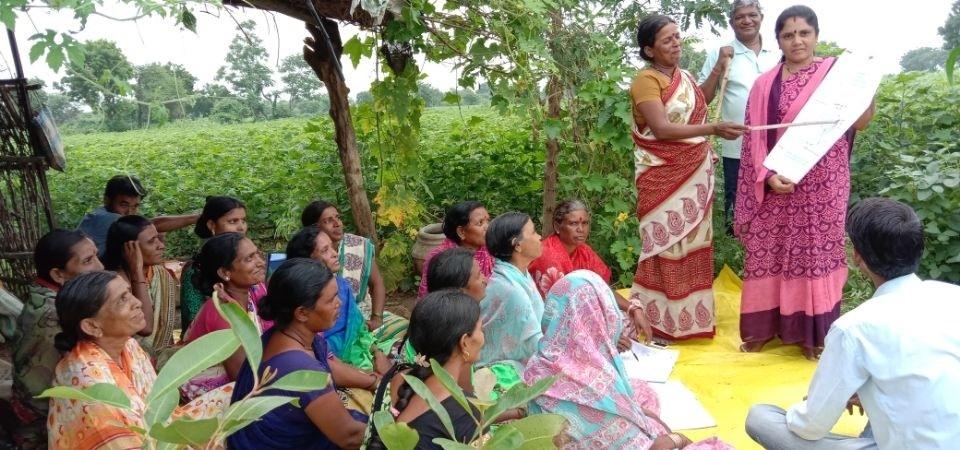 Nhiều nống dân Ấn Độ tham gia lớp học về thích ứng với biến đổi khí hậu trong sản xuất nông nghiệp. Ảnh: WB