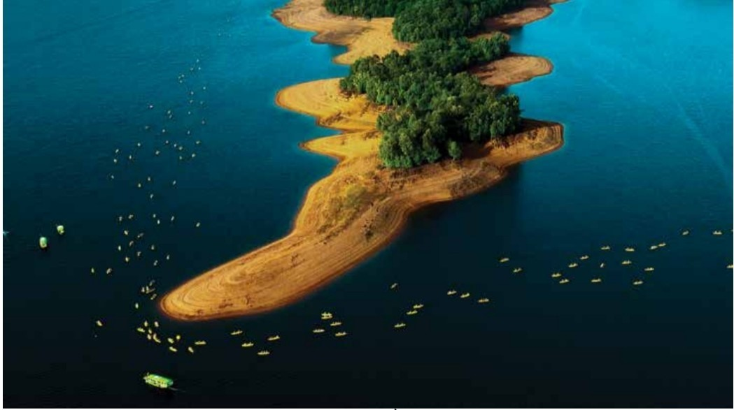 """ĐUA THUYỀN"" (Boat race) by photographer PHAN TRONG DAT"