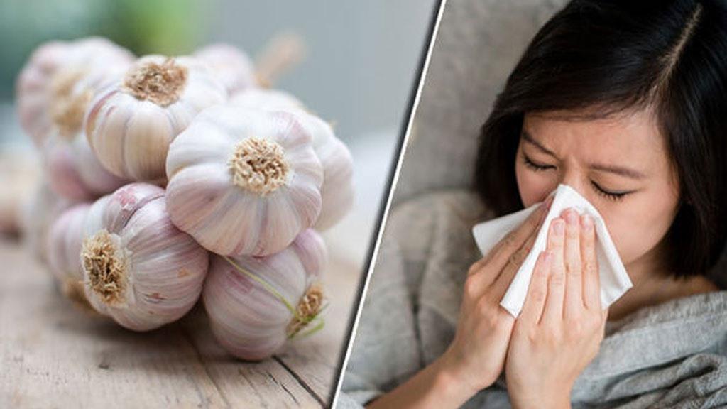 Tỏi giúp tăng cường hệ thống miễn dịch và giảm mức độ nghiêm trọng và kéo dài của các triệu chứng cảm lạnh và cúm SHUTTERSTOCK