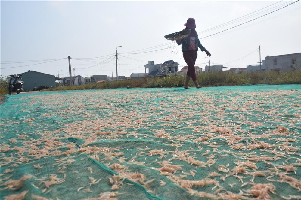 Ruốc được phơi trên tấm lưới để đảm bảo vệ sinh. Ảnh: THANH THẮNG