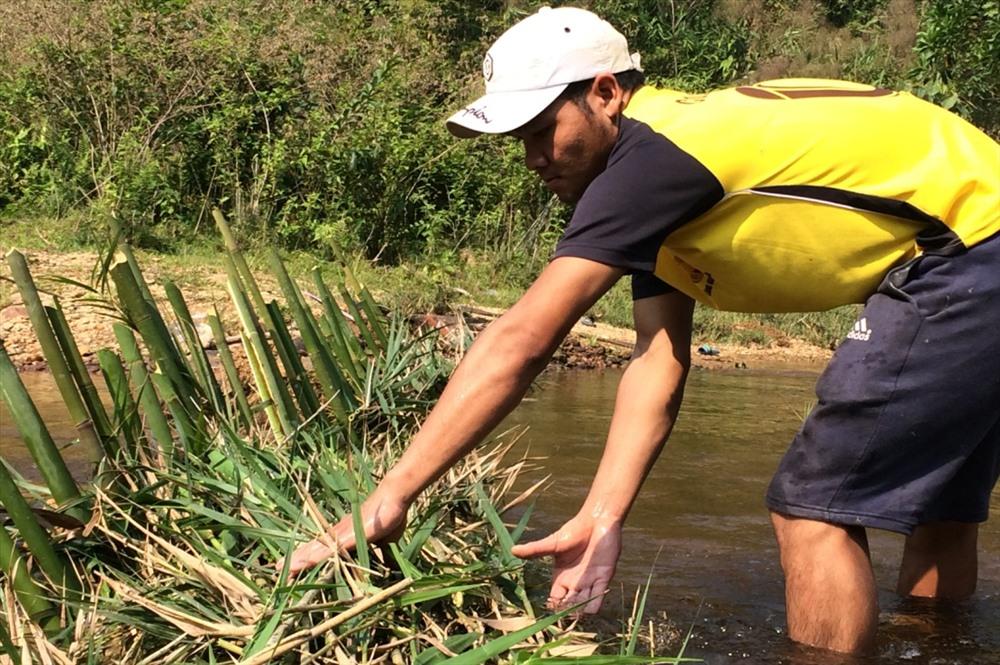 Muốn chặn dòng nước chảy xiết, người dân dùng thân gỗ to chặn ngang, lấy tre cắm xuống dòng và dùng lá cây rừng cùng với đất đắp kín theo thân gỗ.
