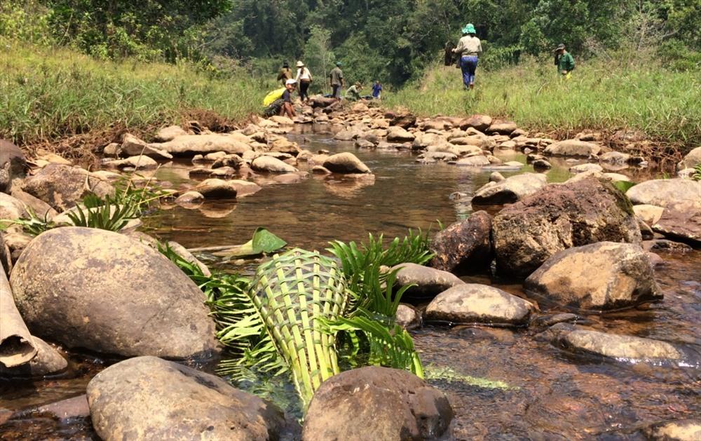 Đan Aruung (ống cây bắt cá) đặt cuối nguồn sông không để cá chạy theo dòng về hạ nguồn.