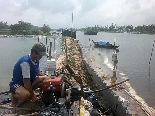 Ao tôm của anh Bùi Ngọc Duy (thôn Long Thạnh, xã Tam Tiến) sát sông Trường Giang có nguy cơ vỡ bờ. Ảnh: PHƯỚC AN