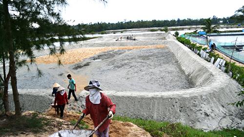 Người dân nhiều nơi tiếp tục đào ao nuôi tôm. Ảnh: QUANG VIỆT