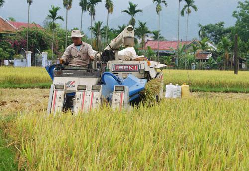 Mở gói tín dụng tam nông sẽ nhanh chóng giúp nông dân mua sắm máy móc, phát triển sản xuất. Ảnh: T.D