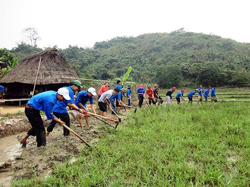 Tuổi trẻ Đoàn Khối các cơ quan tỉnh tham gia giúp đồng bào vùng cao khai hoang lúa nước. Ảnh: N.H