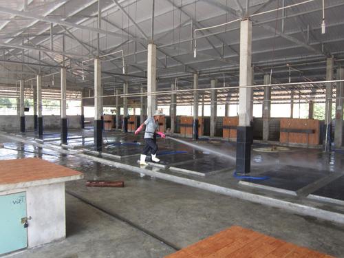 Khu giết mổ tập trung tại thị trấn Đông Phú được đầu tư hiện đại, đảm bảo môi trường. Ảnh D.T