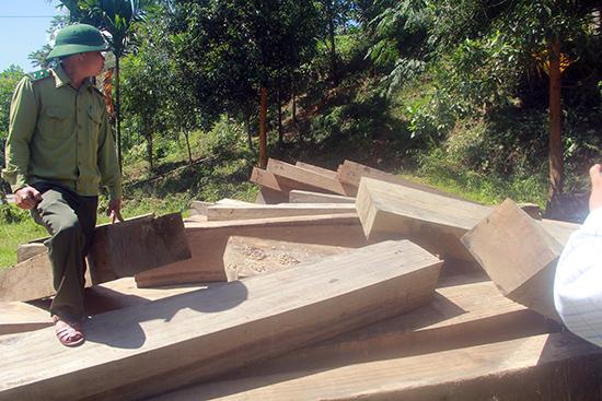 Một bãi tập kết gỗ lậu trái phép nằm gần Trạm quản lý bảo vệ rừng thôn 2 xã Trà Bui (Bắc Trà My).