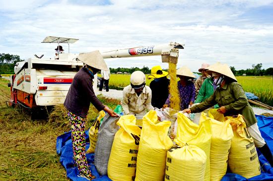 Các hợp tác xã nông nghiệp, kể cả nông dân rất cần nguồn vốn vay để đầu tư máy móc, cơ giới hóa nông nghiệp. Ảnh: PHƯƠNG THẢO