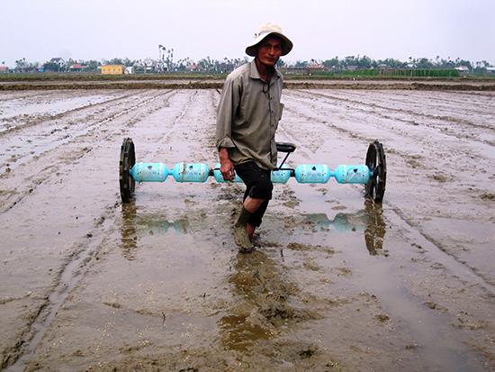 Sử dụng công cụ sạ hàng trên cánh đồng mẫu giúp nông dân tiết kiệm được lượng giống và công lao động.  Ảnh: MAI LINH