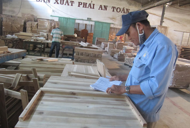 Workers check furniture products for export at a workshop in Quang Nam. All timber collected from log farms have Forest Stewardship Council (FSC) certifications