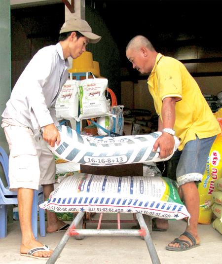 Nhà nông nhẹ bớt gánh lo vì các loại phân bón trên thị trường đều giảm giá.  Ảnh: HOÀI NHI