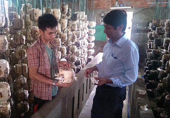 Anh Thiện với mô hình trồng nấm mang lại hiệu quả kinh tế.