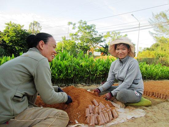 Một số hộ dân ở xã Duy Hải (Duy Xuyên) cải tạo những khu vườn trước đây trồng điều để xây dựng cơ sở ươm giống cây lâm nghiệp.