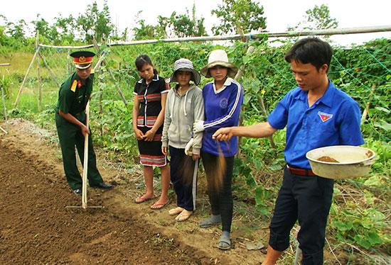 Trí thức trẻ tình nguyện hướng dẫn bà con phương pháp trồng rau sạch.  Ảnh: T.ANH