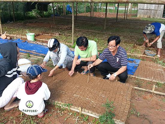 Cơ chế cho đồng bào miền núi phát triển cây dược liệu vẫn còn hạn chế. Trong ảnh: Vườn ươm cây dược liệu tại huyện Tây Giang. Ảnh: TRẦN HỮU