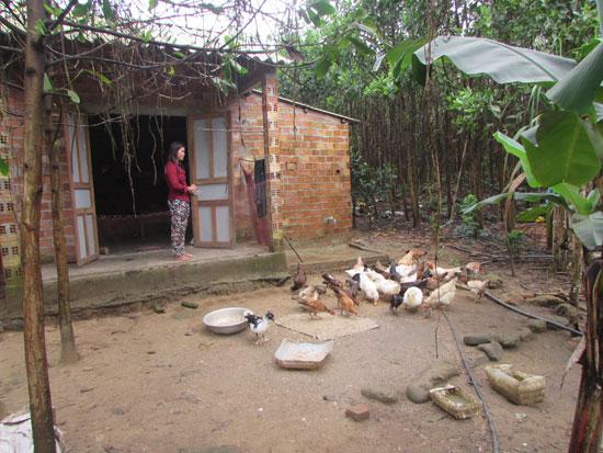 Mô hình VAC mang lại hiệu quả kinh tế cho người dân vùng tây Núi Thành.