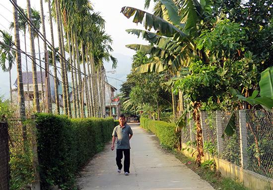 Thôn Tam Hòa, xã Đại Quang (Đại Lộc) quyết tâm giữ gìn cảnh quan xanh - sạch - đẹp của làng quê trong việc xây dựng nông thôn mới.  Ảnh: Triêu Nhan