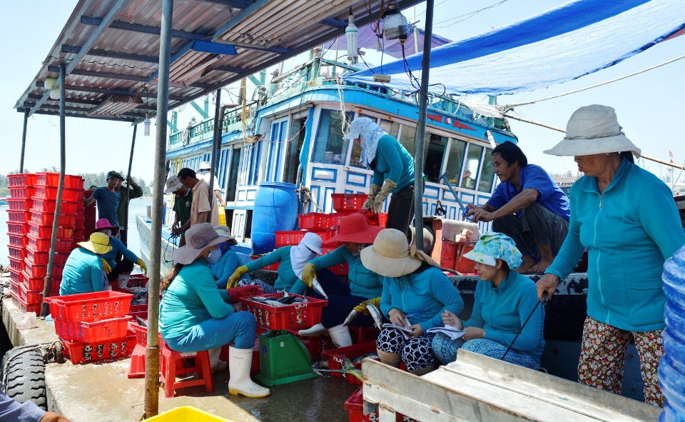 Mua bán cá tại bến đò xã Tam Quang sau chuyến biển từ Hoàng Sa. Ảnh: XUÂN THỌ